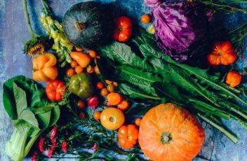 back.to.food.autunno.nutrimente.ella-olsson